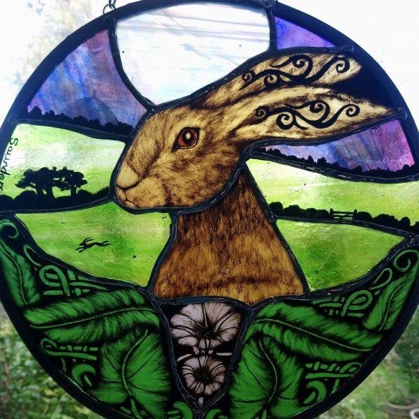 bindweed hare